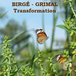 Transformation by Birge-Grimal
